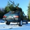 My '83 GL: The Ski Wagon - last post by Skylar